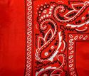 Picture of Red Extra Small Bandana Wild Rag #440-3