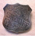 Picture of Sheriff Badge #208